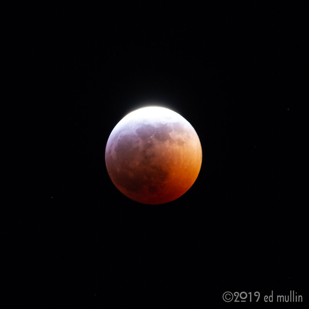 blood-wolf-moon-4550.jpg